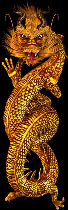 rising dragon graphic